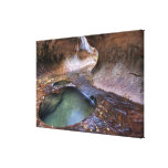The Subway along the Left Fork of the Virgin 2 Canvas Print