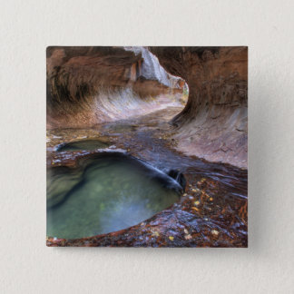 The Subway along the Left Fork of the Virgin 2 Pinback Button