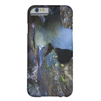 The Subway slot canyon Barely There iPhone 6 Case