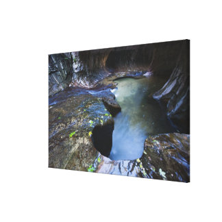 The Subway slot canyon Canvas Print