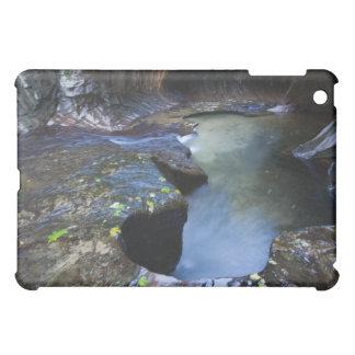 The Subway slot canyon iPad Mini Case