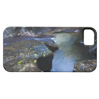 The Subway slot canyon iPhone SE/5/5s Case