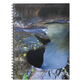 The Subway slot canyon Notebook