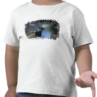 The Subway slot canyon Shirt