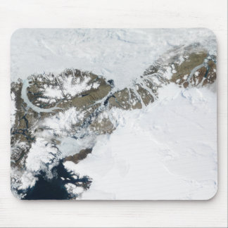 The summer thaw mouse pad