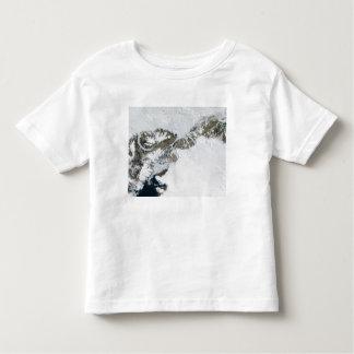 The summer thaw toddler t-shirt