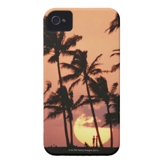 The Sun and Palm Tree iPhone 4 Case
