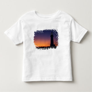 The sun ball drops down on the colorful horizon toddler t-shirt