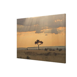 The sun rays lasering through the afternoon canvas print