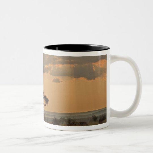 The sun rays lasering through the afternoon Two-Tone coffee mug