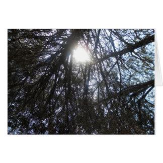 """The Sun Will Break Through To You"" Card"