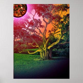 The Sun y el árbol Poster