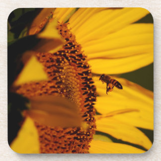 The Sunflower and the bee Beverage Coaster