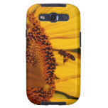 The Sunflower and the bee Galaxy SIII Cover