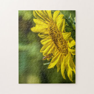 The Sunflower and the Honeybee Puzzle