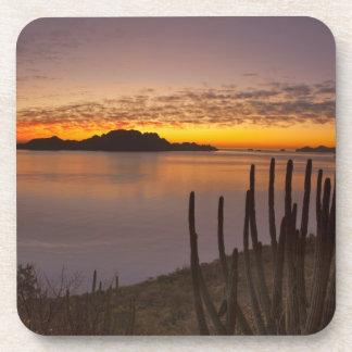 The sunrise over Isla Danzante in the Gulf of 2 Coaster