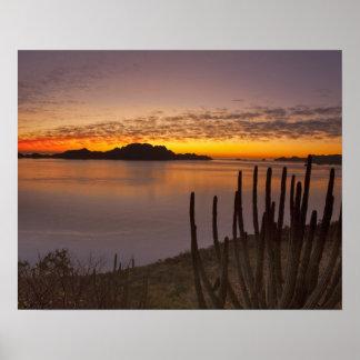 The sunrise over Isla Danzante in the Gulf of 2 Poster