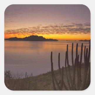 The sunrise over Isla Danzante in the Gulf of 2 Square Sticker