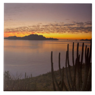 The sunrise over Isla Danzante in the Gulf of 2 Tile
