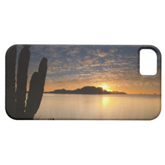 The sunrise over Isla Danzante in the Gulf of iPhone 5 Covers