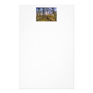 The Sunset Forest Stationery