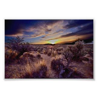 The Sunset Photo Print