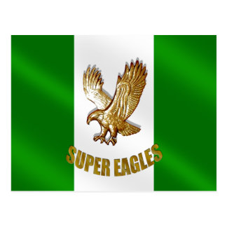 The Super Eagles of Nigeria 2010 soccer gifts Postcard