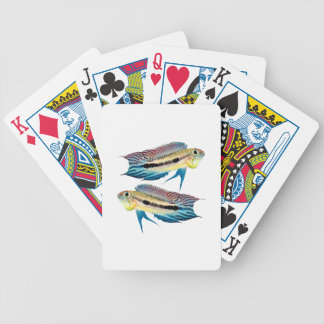 """The superior product """"of Apistogramma mendezi"""" Bicycle Playing Cards"""