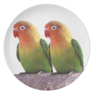 """The superior product """"of Fischer's Lovebird"""" Melamine Plate"""