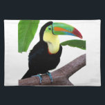 """The superior product """"of Keel-billed Toucan"""" Cloth Placemat<br><div class=""""desc"""">I made this product for the person who likes """"Keel-billed Toucan"""". &#169; 2006 Donar Reiskoffer</div>"""