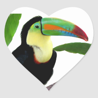 "The superior product ""of Keel-billed Toucan"" Heart Sticker"