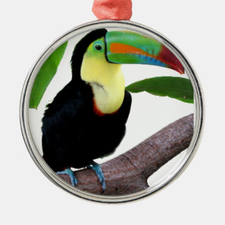 """The superior product """"of Keel-billed Toucan"""" Metal Ornament"""