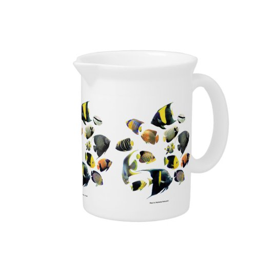 The superior product of Marine angelfish Drink Pitcher