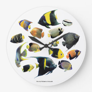 The superior product of Marine angelfish Large Clock