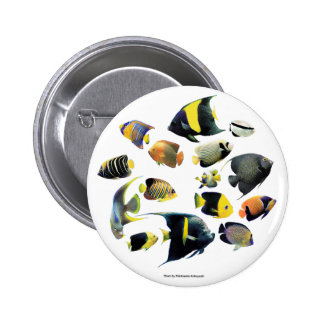 The superior product of Marine angelfish Pinback Button