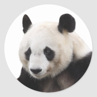 """The superior product """"of Panda"""" Classic Round Sticker"""