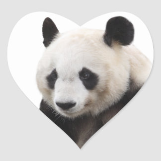 """The superior product """"of Panda"""" Heart Sticker"""