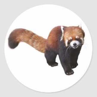 """The superior product """"of Red Panda"""" Classic Round Sticker"""
