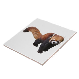 """The superior product """"of Red Panda"""" Tile"""