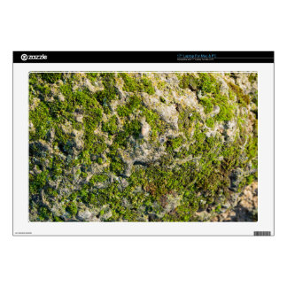 """The surface of the old boulders with moss close-up 17"""" laptop decal"""