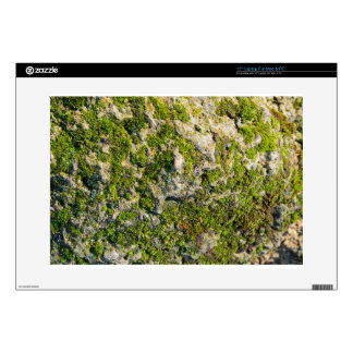 The surface of the old boulders with moss close-up laptop skin