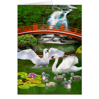 THE SWAN FAMILY CARD