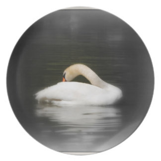The Swan Melamine Plate