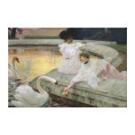 The Swans, 1900 Gallery Wrap Canvas