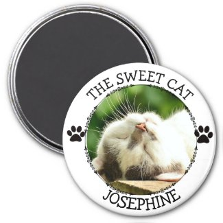 THE SWEET CAT: Humorous Pawprints Photo Button