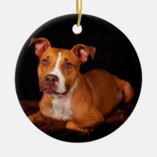 The Sweet Pitty Ceramic Ornament