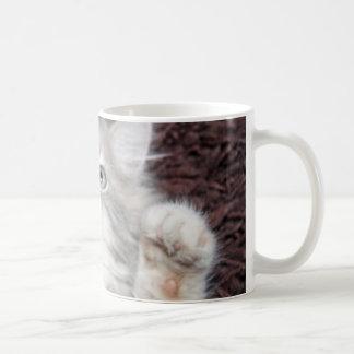 the sweetest kitten in the world mug