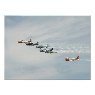 The T-28 Warbird Aerobatic Demonstration Team. Poster
