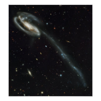 The Tadpole Galaxy Distorted Victim Poster