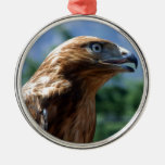 The tamed falcon round metal christmas ornament